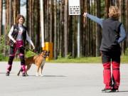 Lydighetskurs - Oppstart 27. mai - FULLT
